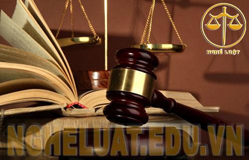 Nghề luật sư là nghề có triển vọng