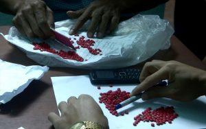 Số ma túy bị phát hiện, thu giữ